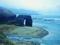 Стеллерова арка – один из природных памятников острова Беринга
