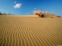 Иллюзия песчаной пустыни