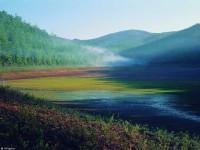 Долина реки Бикин