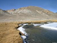 Верховья реки Кокуйбель